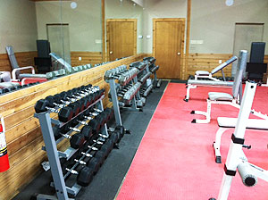 An image of the weights at the gym.